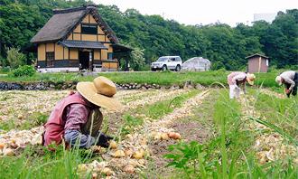 園芸農業療法
